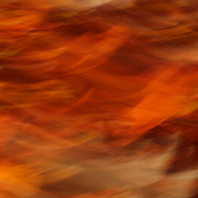 &quot;Sweet Potato Mash&quot; <br />
