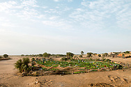 A community vegetable garden built in the dry bed of a wadi where wells access the water table. Drought, emigration, a lack of investment in agricultural production and an exodus of men to urban areas in search of employment has left agriculture to the elderly, women and children in many rural areas.  <br />