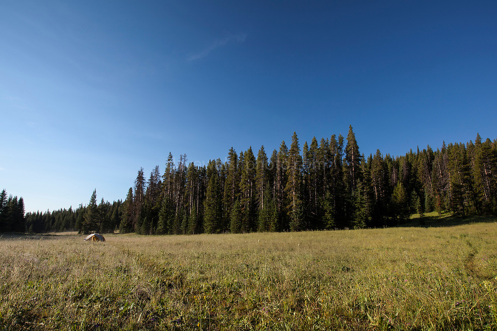 Backcountry camping in Yellowstone National Park, Wyoming.