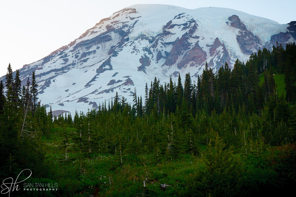 Beautiful view of Mount Rainier from Paradise - Mount Rainier National Park, WA
