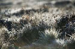 © Licensed to London News Pictures. 30/11/2012..North Yorkshire Moors, England..Overnight frost remains on moorland and low lying fields after a cold night on the North Yorkshire Moors...Photo credit : Ian Forsyth/LNP