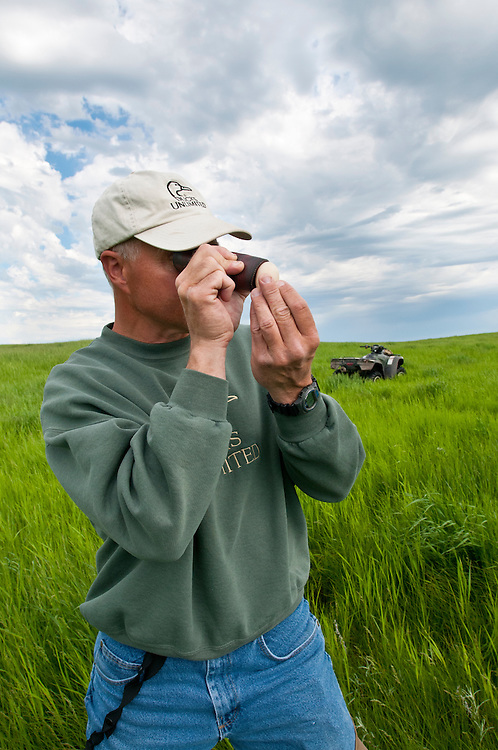 Ducks Unlimited biologists at work, candling egg, Goebel Ranch, McPherson County, South Dakota