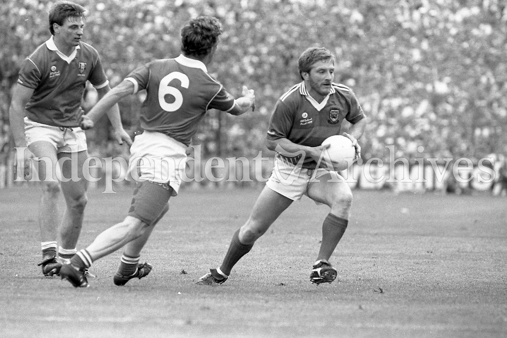 1989 All Ieland senior football final Cork v Mayo 989-448 (Part of the Independent Ireland Newspapers/NLI Collection)