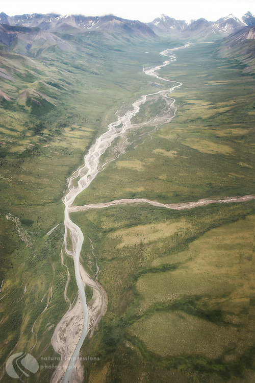 Denali Flight to from Healy to the Peaks of  Mt Denali. Braided rivers Below.