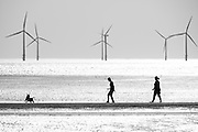 A couple walking their dog in early summer heat at Crosby Beach, Liverpool.