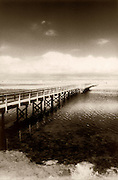 The Pier At Bolsa Chica Wetlands In Huntington Beach