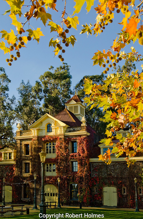 Inglenook, Napa Valley, California