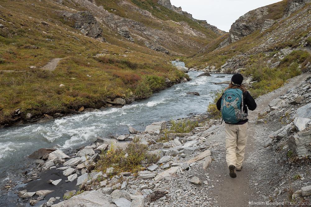 Hiker walking along the Savage River, Denali National Park, Alaska