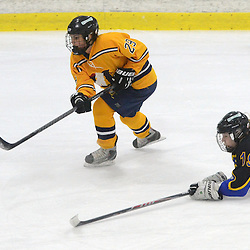 Staff photos by Tom Kelly IV<br /> Downingtown East defeated Unionville in the girls Flyer's Cup Championship, Wednesday night March 19, 2014 at Ice Line in West Goshen.