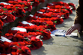 Norwich Armistice Day 2014