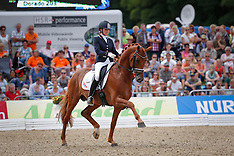 Verden 2013 World Championship Young Dressage Horsers