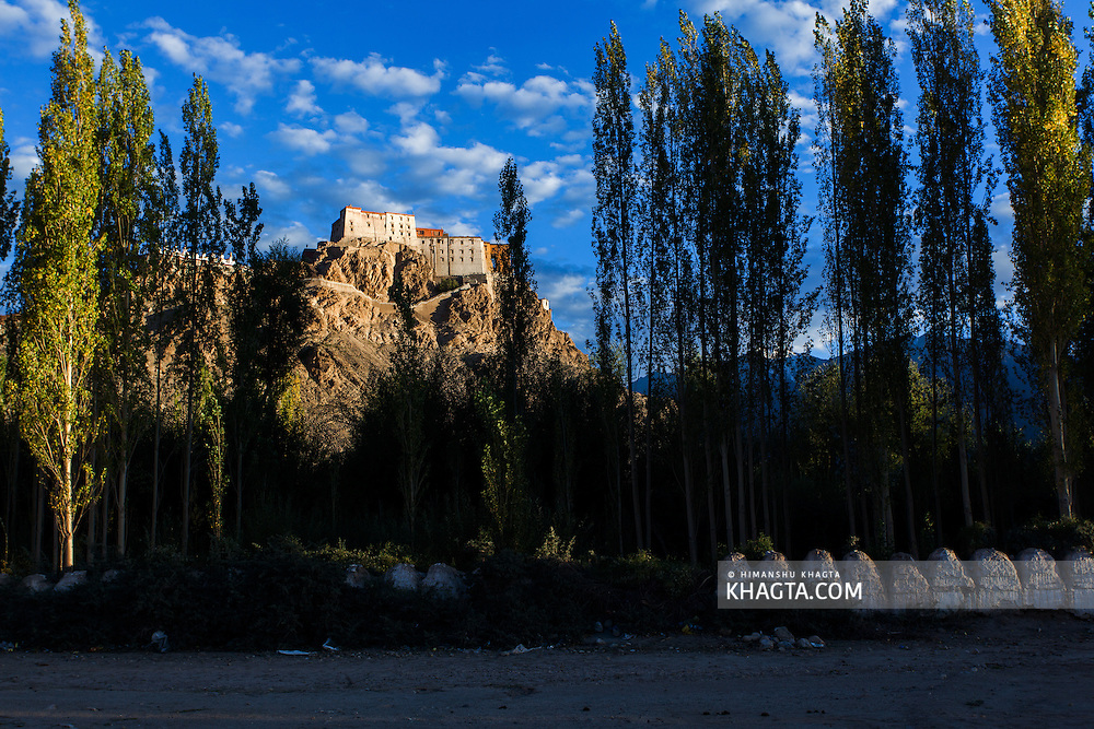 Travel Pictures from Thiksey, Ladakh