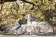 Christmas decoration decorates the Forsyth Park fountain in Savannah, GA.