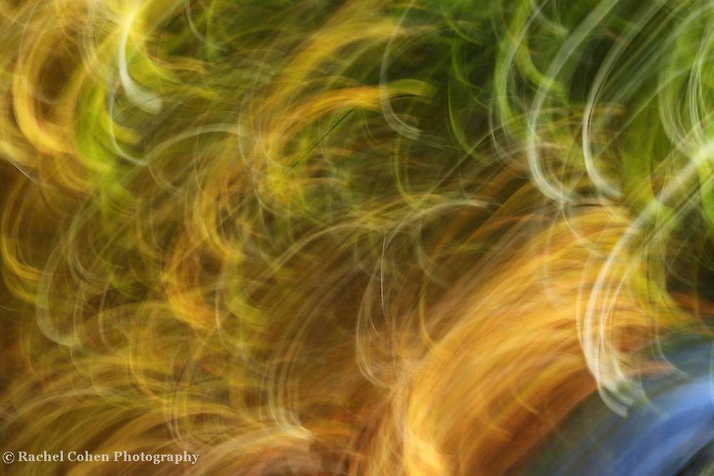 &quot;Movin to the Groovin&quot; <br />