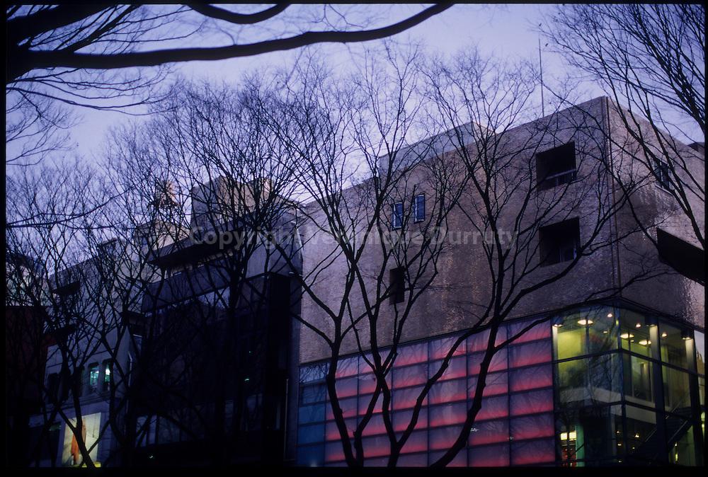 """Omote-Sando avenue, Shibuya, Tokyo, Honshu, Japan / l'avenue Omote-Sando, """"les champs elyséees de Tokyo"""", Shibuya, Tokyo, Honshu, Japon"""