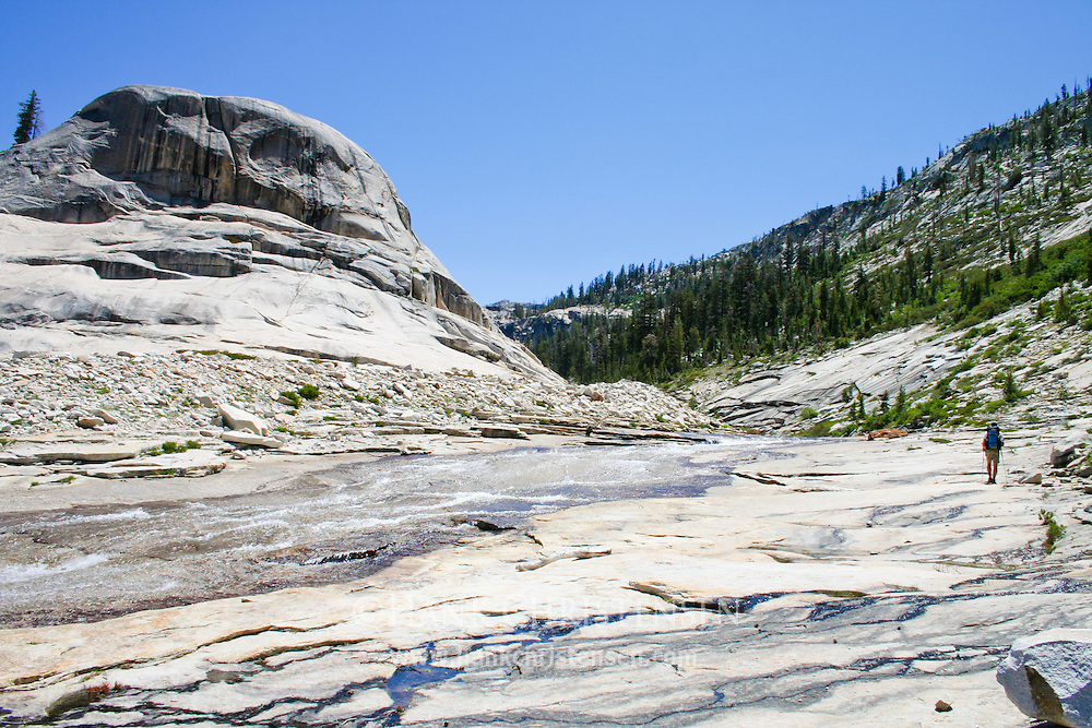 Backpacker walks cross-country along a wide shallow stream in the northern wilderness of Yosemite National Park
