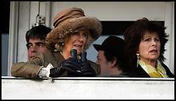 The Duchess of Cornwall watches the Queen Mother Champion Steeple Chase at the Cheltenham Festival Ladies Day at Cheltenham Racecourse, Cheltenham, United Kingdom. Wednesday, 12th March 2014. Picture by Andrew Parsons / i-Images