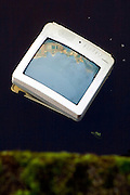 Discarded Television floating in a canal, Amsterdam reflected upon