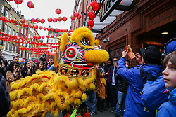 © Licensed to London News Pictures. 25/01/2020. London, UK. Lion dancers visits businesses in London's China Town during as Chinese and non-Chinese community celebrates Chinese New Year, the Year of the Rat. Photo credit: Dinendra Haria/LNP