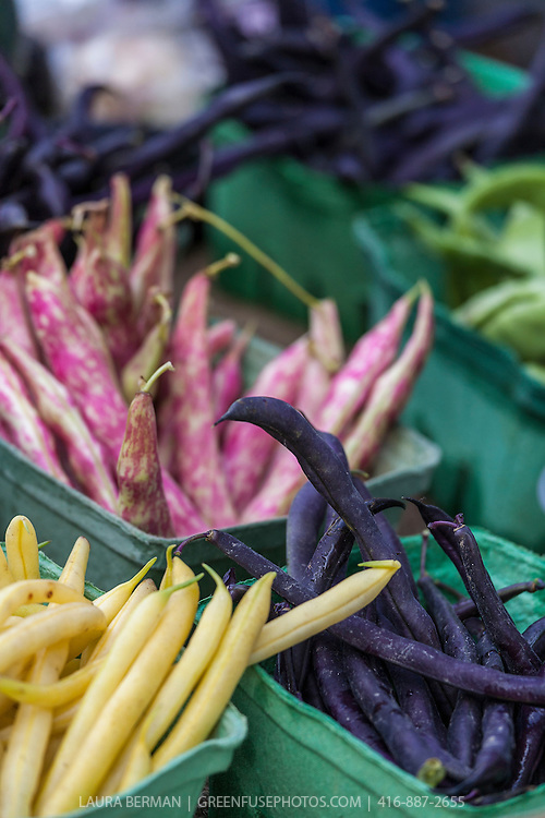 Yellow, purple and red and white dragon's tongue beans at a farmers market