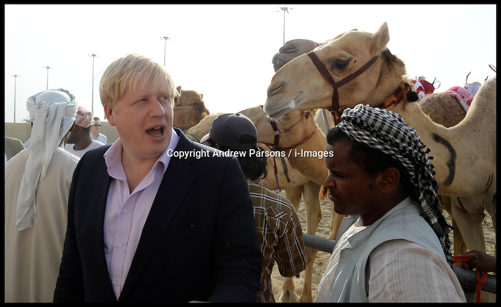 The London Mayor Boris Johnson goes Camel Racing in Doha, Qatar. On the first day of his 3 day tour of Qatar Tour, Boris meets the camels before the race. Friday 19 April, 2013, Photo by: Andrew Parsons / i-Images