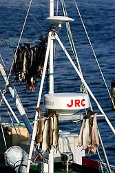 NORWAY LOFOTEN 27MAR07 - Lofoten fishing boats return to port in Henningsvaer on the Lofoten islands...jre/Photo by Jiri Rezac..© Jiri Rezac 2007..Contact: +44 (0) 7050 110 417.Mobile:  +44 (0) 7801 337 683.Office:  +44 (0) 20 8968 9635..Email:   jiri@jirirezac.com.Web:    www.jirirezac.com..© All images Jiri Rezac 2007 - All rights reserved.