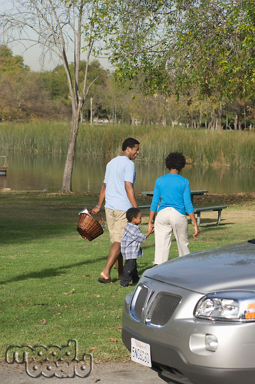 Family with one child (5-6) on picnic in park