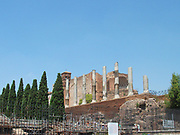 Detail from the Roman Forum, a rectangular plaza in the centre of Rome, Italy. Originally a marketplace, it became the centre of Roman public life. Now a fragmented and sprawling collection of ruins. In the background you can see the Collosseum.