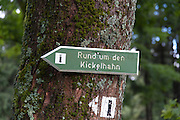 Wegweiser zum Kickelhahn, Goethe-Wanderweg, Thüringer Wald, Thüringen, Deutschland | sign to Kickelhahn, Thuringia forest, Thuringia, Germany