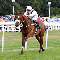 Lingfield 1st August