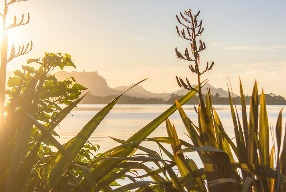 Parua Bay, Whangarei Heads
