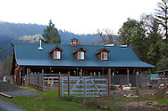 The Goat barn and barnyard sit in the valley and the property is surrounded by forest.