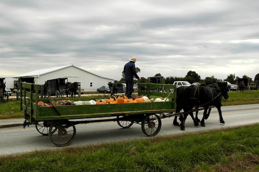 Vente aux ench&egrave;res des r&eacute;coltes Amish organis&eacute;e deux fois par semaine par William Borntrager, l'un des fermiers Amish les plus influent du cont&eacute; de Clark, Missouri. Cette vente est le second moyen de distribution des produits Amish apr&egrave;s la vente directe &agrave; la ferme. Les principaux clients sont de petits commer&ccedil;ants locaux.<br /> <br /> The Amish produce auction is organized twice a week by William Borntrager. The auction is the second way for the farmers to distribute their produces after the direct sale on the farm. Main customers are local shops.