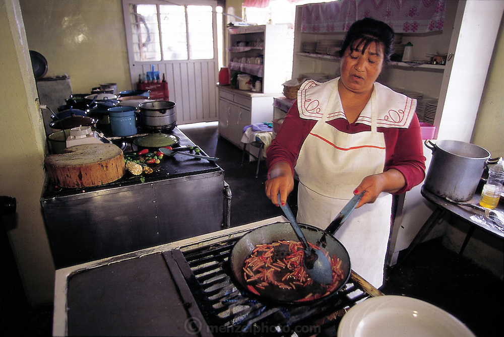 María Luisa Aguirre del Gadillo, the owner of the Restaurante Zempoala near Teotihuacán, Mexico, fries up a batch of red agave worms: She has a freezer full of frozen worms and wants to expand her edible insect market into the United States. (Man Eating Bugs page 117 Top)