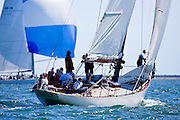 Gleam sailing in the Nantucket 12 Meter Class Regatta.