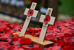 © Licensed to London News Pictures.07/11/2013. London, UK. Two wooden Crosses of Remembrance laid by Prince Harry and Prince Philip, Duke of Edinburgh during their visit at the Field of Remembrance at Westminster Abbey.Photo credit : Peter Kollanyi/LNP