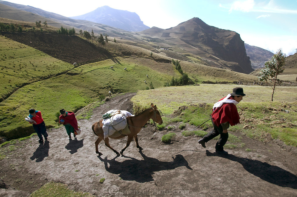 (MODEL RELEASED IMAGE). Making the long return trip to their home in Tingo, Ecuador from the weekly market in the valley, Orlando Ayme leads his father-in-law's horse, while his wife Ermelinda (center) carries the bundled-up baby and some of the groceries and Livia trudges along with her schoolbooks. Alvarito has literally run up the steep path ahead; like 4-year-old boys everywhere, he is a tiny ball of pure energy. Hungry Planet: What the World Eats (p. 109).