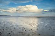Geometric patterns in drying mud, Alvord Lake, a seasonal shallow alkali lake in Harney County, Oregon