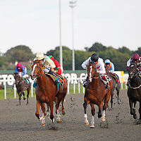 Top Tug and Ryan Moore winning the 6.20 race