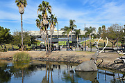 La Brea Tar Pits Lake Display