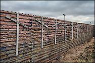 Muro fronterizo, Otay. (FOTO: Prometeo Lucero)