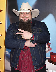 The contestants of 'The Voice' attend the 'Sing' world premiere held at the Microsoft Theatre in Los Angeles. 03 Dec 2016 Pictured: Sundance Head. Photo credit: American Foto Features / MEGA TheMegaAgency.com +1 888 505 6342