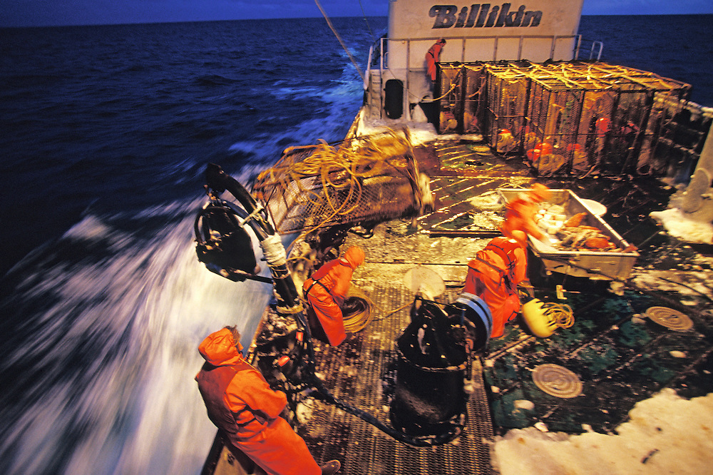 Alaska. Bering Sea. Deckhands work aboard the F/V Billikin to set crab pots into the water during Opelio season.