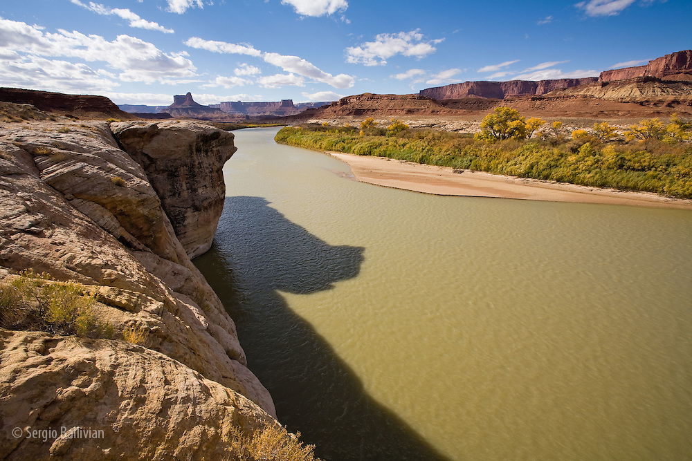 The Green River next to the Anderson Bottom area during the peak of Autumn colors as seen from the White Rim Trail in Canyonlands National Park, Utah.