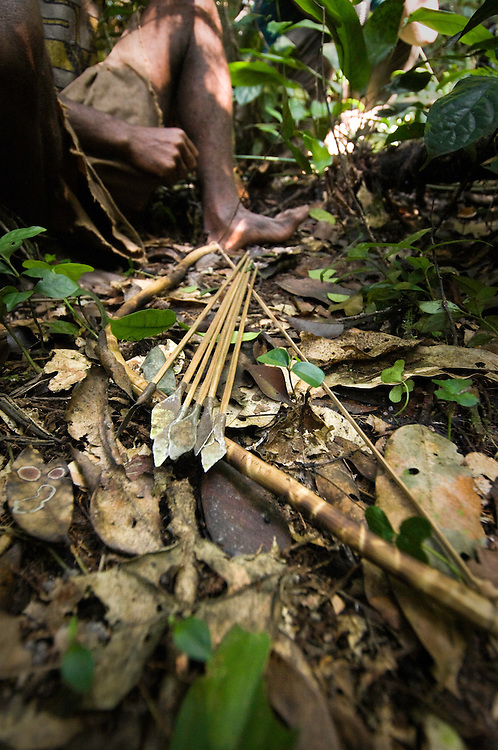 Bow and arrows, hand made by Mbuti pygmies and used for hunting birds, on display in the Okapi Wildlife Reserve of the Ituri Rainforest.
