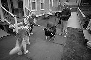 "Tracey Mazur, neighbor of Brian Croft hands treats to Brian's dogs, Piggy and Hunter. Every night around 7:30 we go on neighborhood dogwalks,"" said Croft."" (© Matt Wright 2011)"