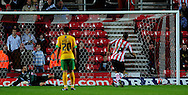 Southampton - Tuesday, September 30th, 2008: David McGoldrick of Southampton scores past David Marshall of Norwich City from the spot to make it 2-0 during the Coca Cola Championship match at Southampton. (Pic by Daniel Hambury/Focus Images)