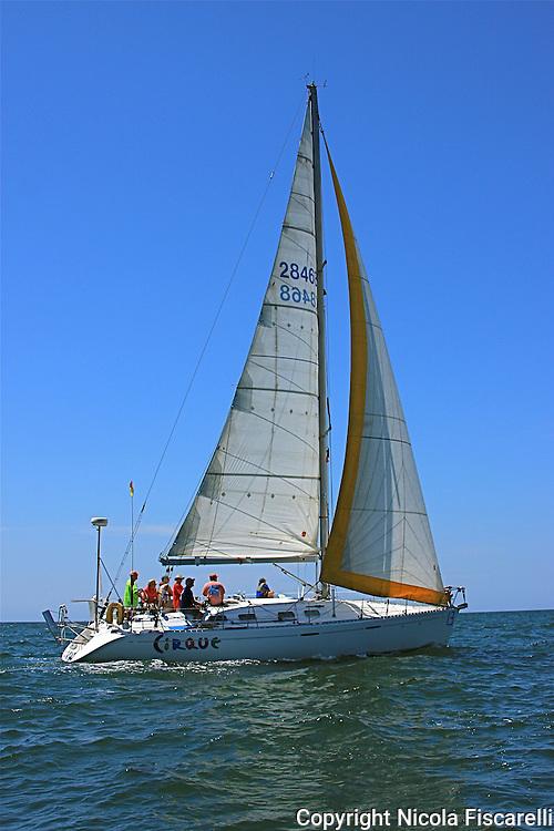The sail boat participates in 2009 Regatta    of the coast of La Cruz Mexico.