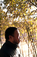 Artist Ai Wei Wei poses for a portrait at his studio  in Beijing, China, on Friday, Jan. 13, 2012. Keith Bedford/Redux for The Harvard Business Review