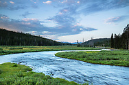 Sunrise over the Lewis River in Yellowstone National Park